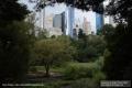 USA-NYC-19-Brooklyn_5472