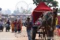 Indien-19-Pushkar_0026