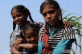 Indien-19-Pushkar_0028