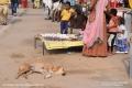 Indien-19-Pushkar_0071