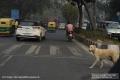 Indien-19-Delhi_0024