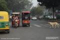 Indien-19-Delhi_0026