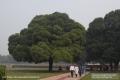 Indien-19-Delhi_0051