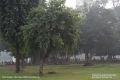 Indien-19-Delhi_0053