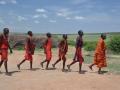 Masais tanzen