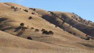 Landschaft unterwegs vom Auto aus