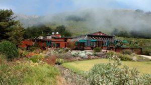 Schönes Motel und Restaurant bei Ragged Point