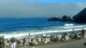 Blick auf Strand, Boote und Wale